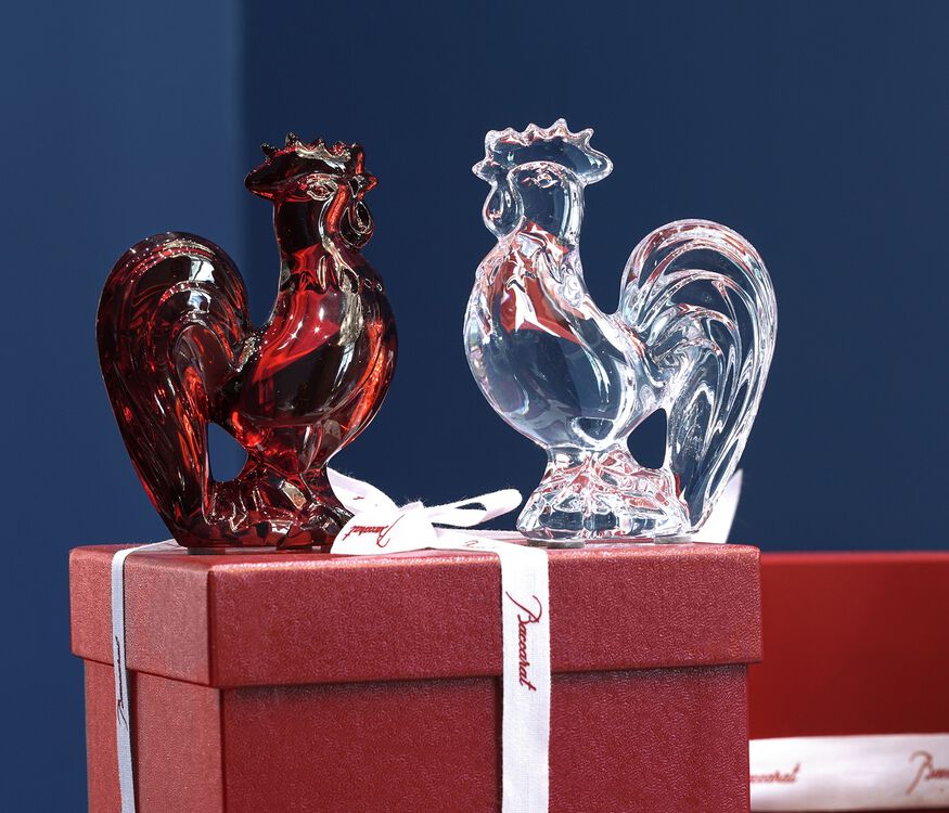 ZODIAQUE ROOSTER, Clear
