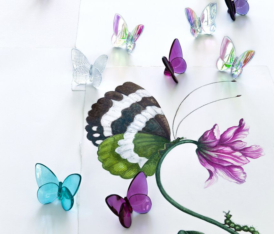 PAPILLON LUCKY BUTTERFLY, Iridescent clear - 4
